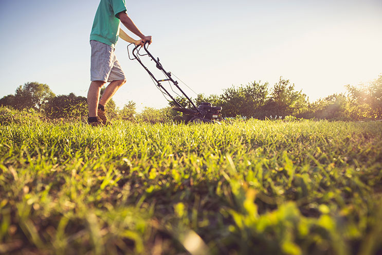- How To Start A Landscaping Business